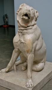 Molossian_Hound,_British_Museum