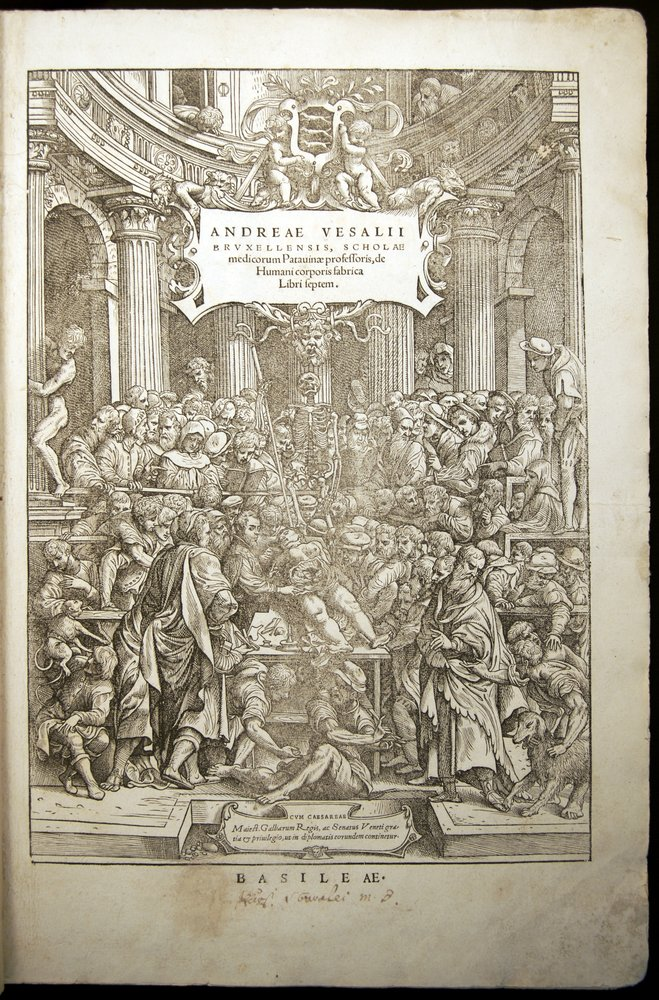 Renaissance Anatomy | Before Newton